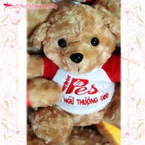 Gấu bông in logo Anh ngữ Thượng Đỉnh