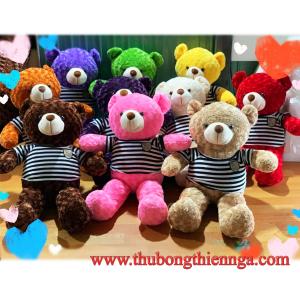 Gấu bông teddy giá sỉ