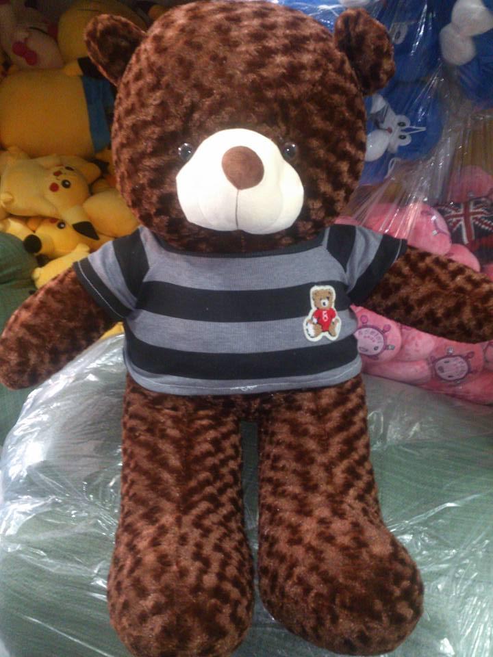 Teddy áo thun