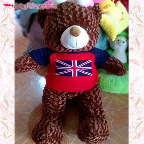 Teddy áo len