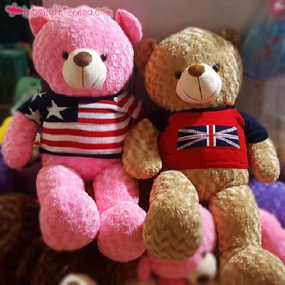 teddy ao len 2